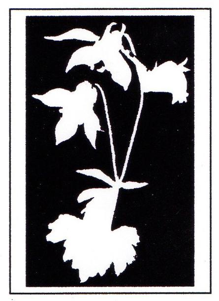 image-1520