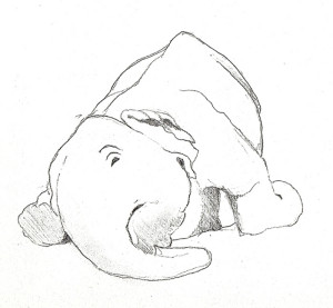 elephant 2010